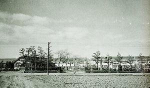昭和31年(1956年)